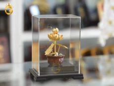 Chậu cây hoa sen vàng 24k- quà tặng mẹ mùa vu lan hiếu nghĩa