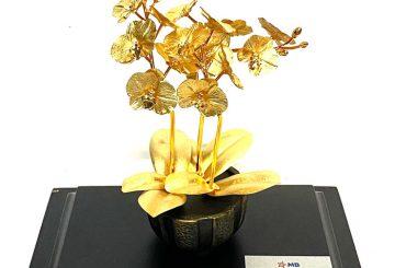 Bộ sưu tập cây bonsai mạ vàng 24k đẹp tinh xảo